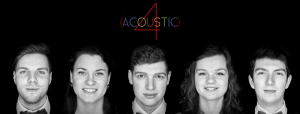 (c) acoustic4