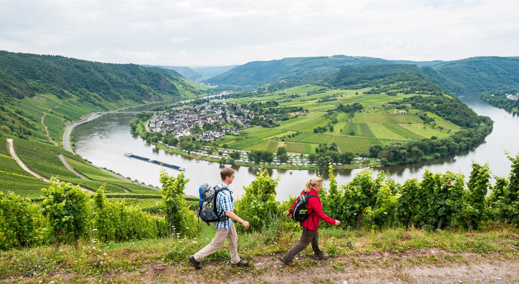 Wandern Mosel Moselsteig Wander Tourentipps Traben